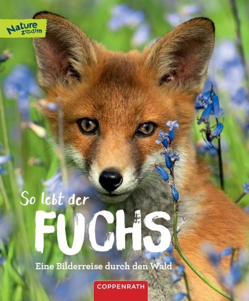 So lebt der Fuchs
